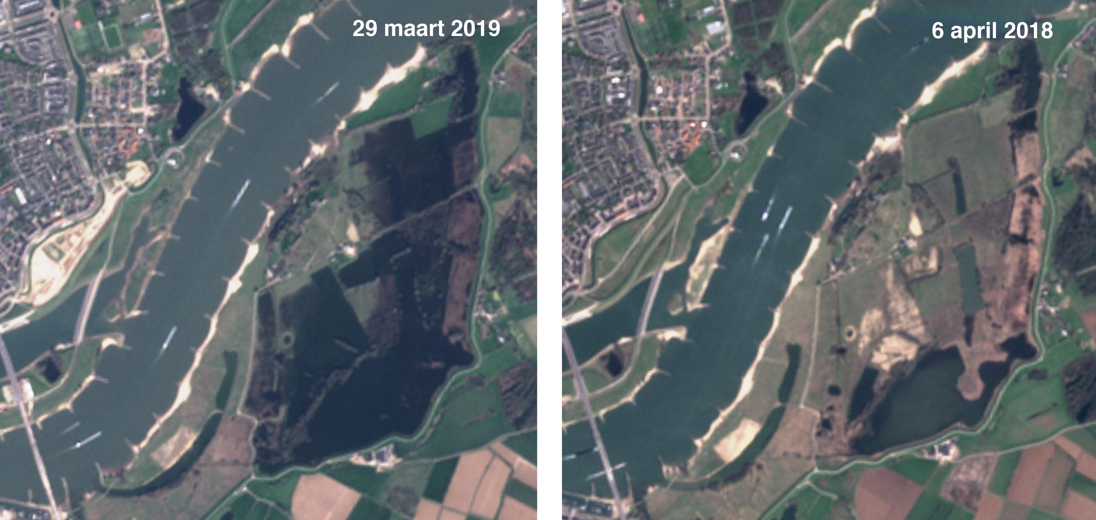Satellietfoto van de Oude Waal nabij Nijmegen voorjaar 2019 (links) en 2018 (rechts)(bron: https://apps.sentinel-hub.com/sentinel-playground/)